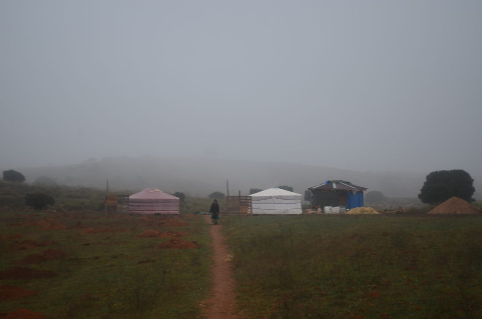 A misty morning at Camp Altiplano, October 2018